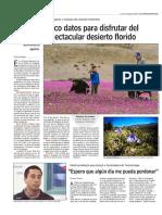 _desierto Floridor_ - Www.lun