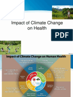 CLimate Change Impact on Health