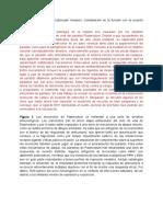 Evasion inmune de plasmodium faciparum