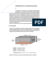 Factores Determinantes de La Microlocalizacion
