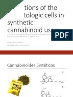 Seminario Hematologia Daniel Rivas .pdf