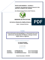 Caracterisation Petrographique Et Structurale Des Gres Ordoviciens de Quartzite El Hamra Champ de Hassi Tarfa Sud-est Algerien HTF