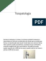 fisiopatologia-EDGAR-ESPINA-BIFIDA (1).pptx