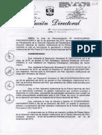 POA PNP AF 2017.pdf