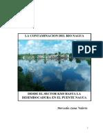 CONTAMINACION RIO NAGUA PRACTICA DOCENTE MERCEDES FINAL.docx