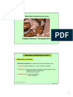 Clase_1._Minerales.pdf