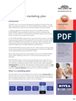 Developing a marketing plan.pdf