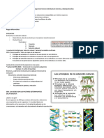 Genetica Resumen