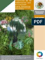 Fichas descriptivas de 52.pdf