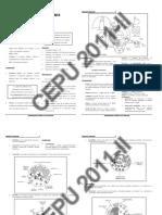 CEPU Anatomia 2011.pdf