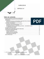 CursoVB13.pdf