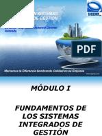 Fundamentos y Elementos de Los Sistemas Integrados de Gestion