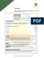 cv-instructivo-modelo.pdf