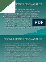 CONVULSIONES NEONATALES (1)