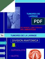 Extra.-tumores de Laringe