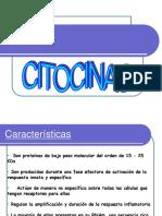 124854541-citocinas-ppt