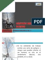 Tema 2 Gestión Del Riesgo
