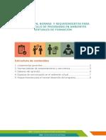 lineamientos_normas_requerimientos.pdf