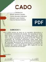 SECADO-1