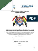 EJM SISTEMATIZACION final 2017.docx