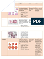 Animal and Plant Tissues