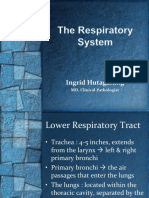 1. Pengantar Sistem Respirasi