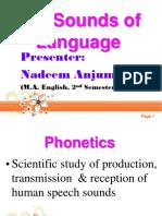 phonologyvsphonetics-140520124458-phpapp01