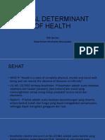 Social Determinant of Health (1)