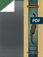 Acerca_del_interconductismo_2001.pdf