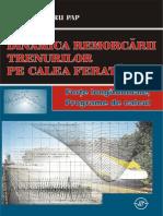 Dinamica Remorcarii Trenurilor Pe Calea Ferata - P. PAP 2008