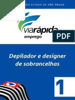 DEPILADOR1V431.07.13.pdf