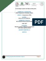 LuisAlcocer_J2_Resumen_Cap_13_Manejo_excepciones_Unidad_V.docx