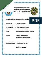 TRABAJO de La Planta Del Algodonero Padilla