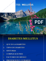 DIABETES PROYECTO.ppt
