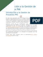 Introducción a La Gestión de Proyectos PMI