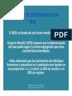 1006460537.MECANISMOS DE DETERMINACION DEL SEXO.pdf