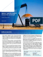 Impact of the Onshore Upstream Oil and Gas Industry on the Romanian Economy_20160222_ro