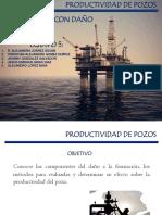 Exposicion 6 - Pozos Con Daño (2.1.5)