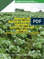 Manual de BPA en Repollo.pdf