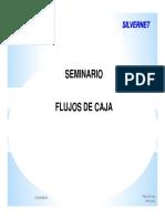 seminario-flujo-de-caja.pdf