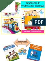 CURRICULA- planificaciónY programación curricular.pdf