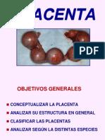 Teo Estructuraplacentaria 2011 (1)