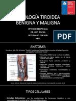Patologatirodeabenignaymaligna 141130173058 Conversion Gate01