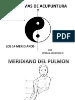 os 14 meridianos diagramas phpapp01.pptx
