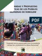 Demandas y Propuetas Politicas de Los Pueblos Indigenas de Iximulew Nov 2015
