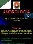 Andrología ppt