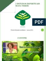 curso_mediunidade2.pdf