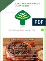 curso_mediunidade7