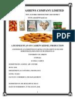 SAMUEL CASHEW BUSINESS PLAN.docx
