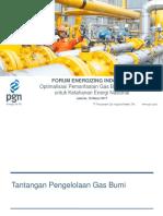 9- Danny Praditya - Materi PGN Untuk FEI 2 - Seminar PGD UI 16032017